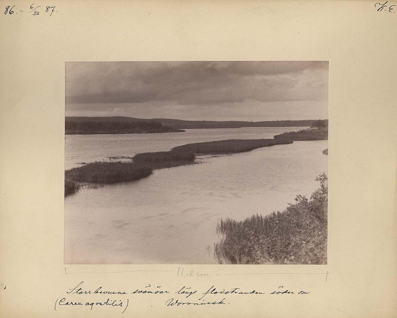 6.8.1887. Наводнение на южной стороне Вороньей Лудки