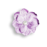 Palvinka_FlowerEssence_flower1bsh.png