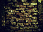 Textures of brick walls (11).jpg