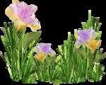 MRD_EggStraSE_floral-grass cluster (2).png