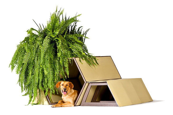 Домики для собак