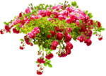 RR_MemoriesOfMom_RoseGarden_Element (44).png