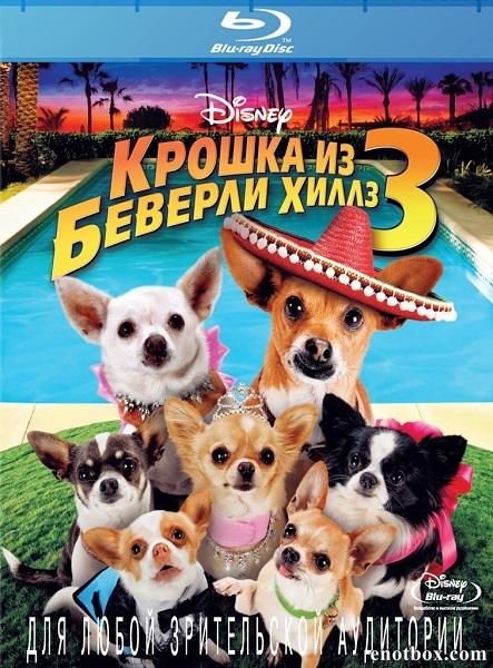 Крошка из Беверли-Хиллз 3 / Beverly Hills Chihuahua 3: Viva La Fiesta! (2012/BDRip/HDRip)