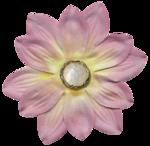 feli_ss_fabric flower2.png