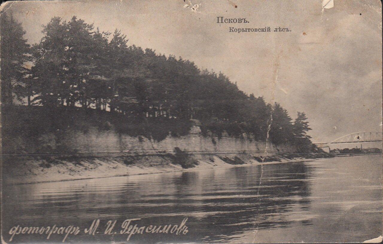 Корытовский лес