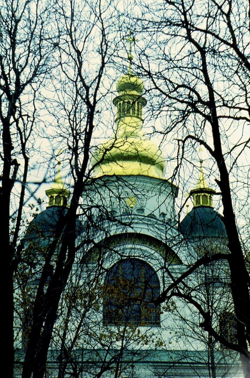 11.  Купола Софии в паутине