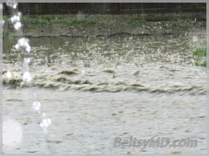 Бельцкие улицы превратились в реки в результате ливня