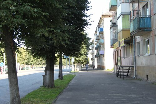 цветочная клумба, 2013-08-25