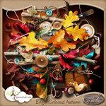 Bright Colored Autumn