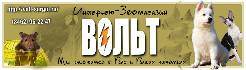 http://img-fotki.yandex.ru/get/6714/162753204.2e/0_dc664_4bb761f5_XL.jpg