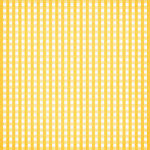 aw_picnic_gingham yellow.jpg