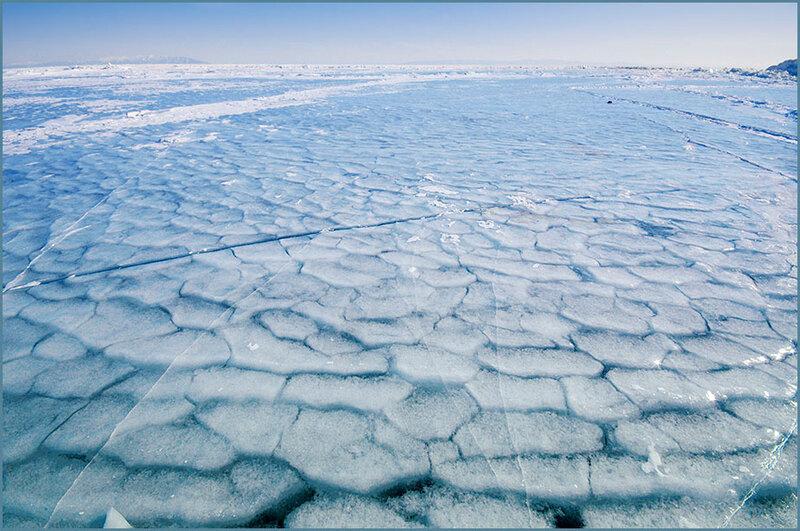 Ледяная чешуя