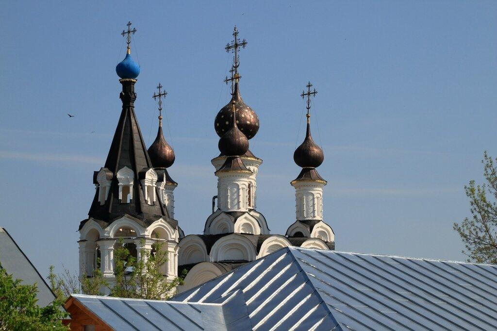 Вид на Благовещенский собор Свято-Благовещенского мужского монастыря