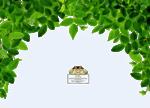 12930417494_fleurs_nikita.png