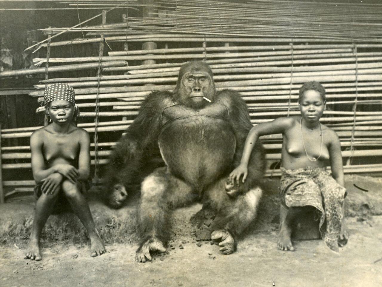 Центральная Африка, конец XIX века