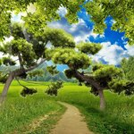 Backgrounds nature 3D