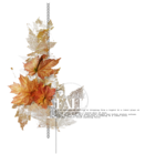 natali_2013_fall_cluster9.png