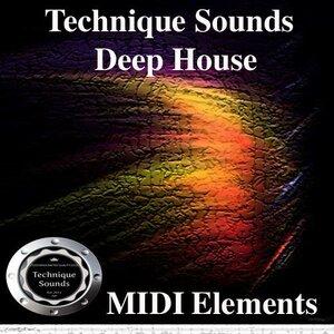 Technique Sounds - Deep House - MIDI Elements (MIDI)
