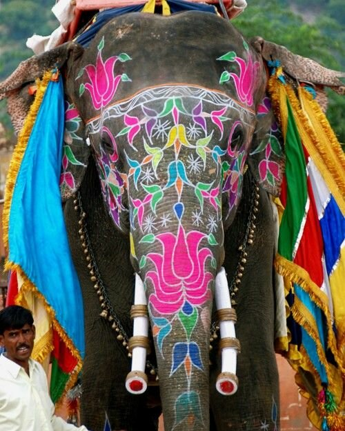 Buy indian elephant gifts and get free shipping on