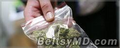 Кот, проносивший марихуану молдавским заключенным