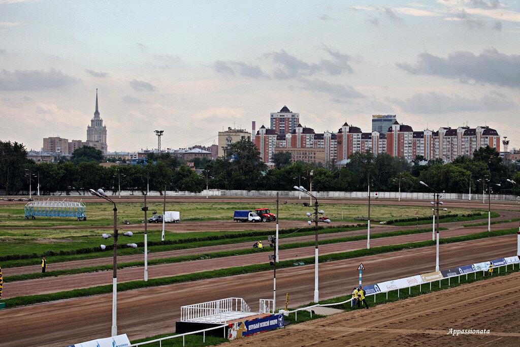 Москва. Большие летние скачки 2013