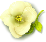 Beautiful-Blossom_birdhouse1 (9).png