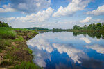 Берег реки Молога
