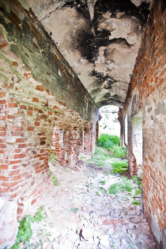 Дусадьба Вяземских - руины