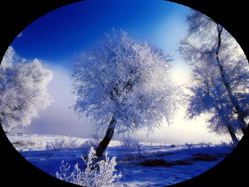 Картинка прозрачный фон зима