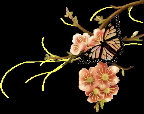 Tubes Insectes - Thème : Les papillons