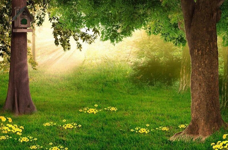 Фоновые картинки природы для презентации
