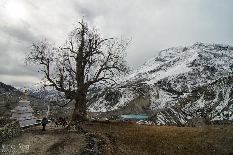 Вид на местную ступу и озерцо под ледником Гангапурна, Мананг, гималаи, непал, горы