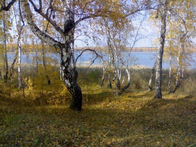 Озеро осенью (29.07.2013)