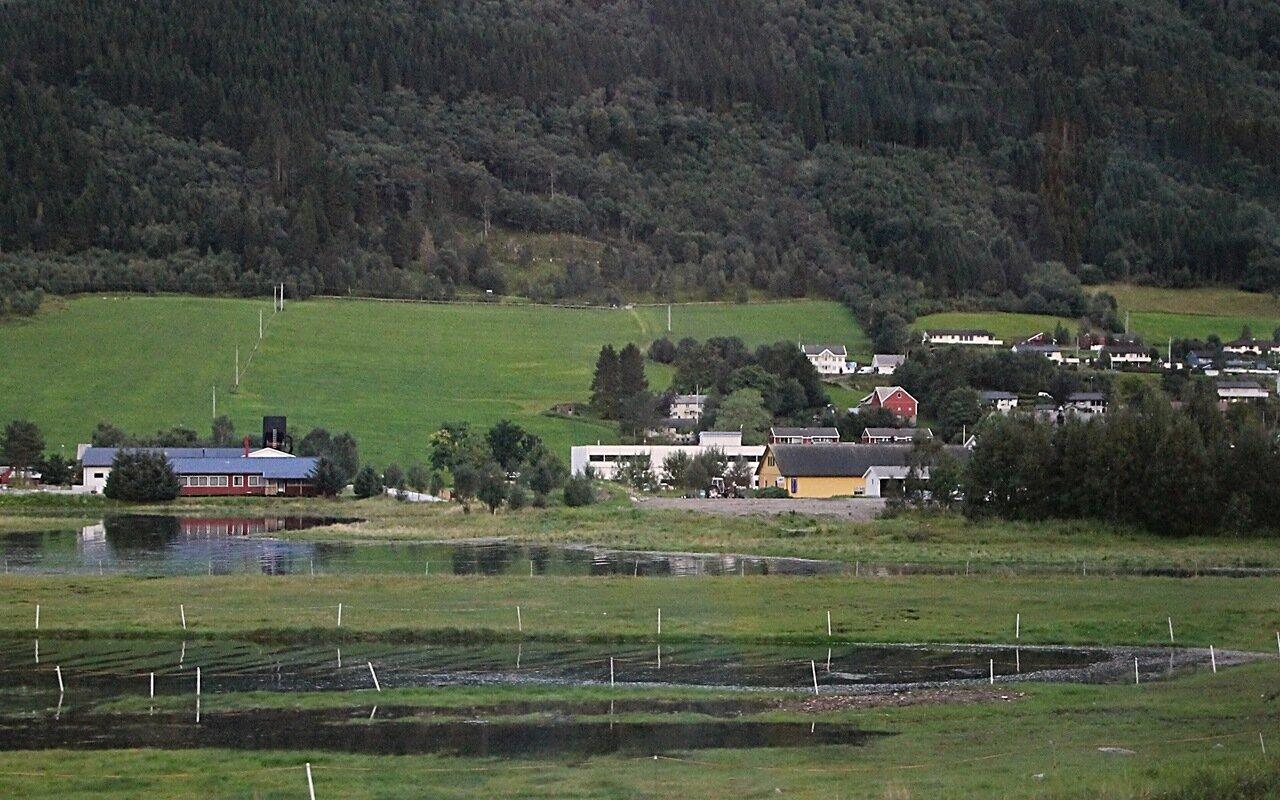 Западная Норвегия, Халсафьорд,
