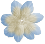 blushbutter_white_flower8.png
