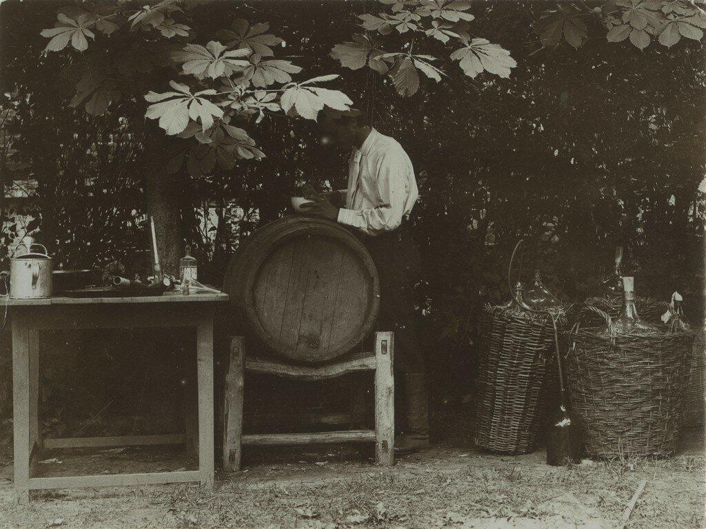 1900-е. Виноделие