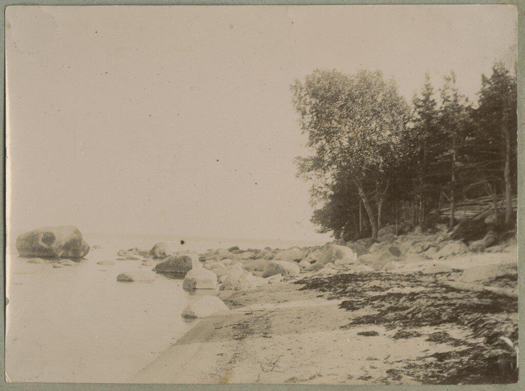 1900. Каменистый берег возле Кясму