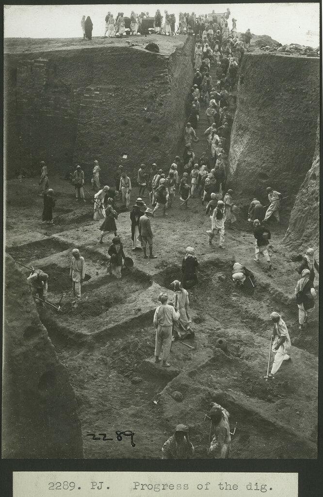 the-excavation1.jpg