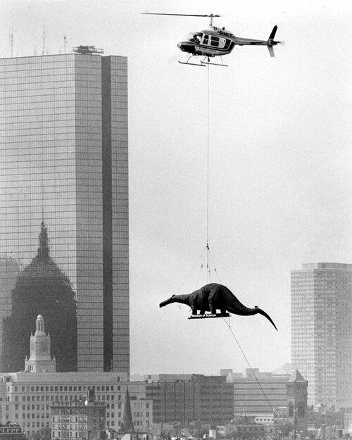 Доставка динозавра