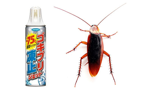 Cockroach Freezing Jet