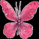Desclics_Lollipops_EL042.png