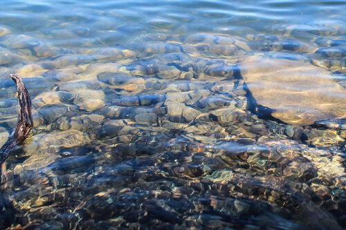 Чистейшая вода озера Увильды