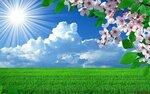 5114272-solnechnaya-pogoda-vesnoy-v-pole.jpg