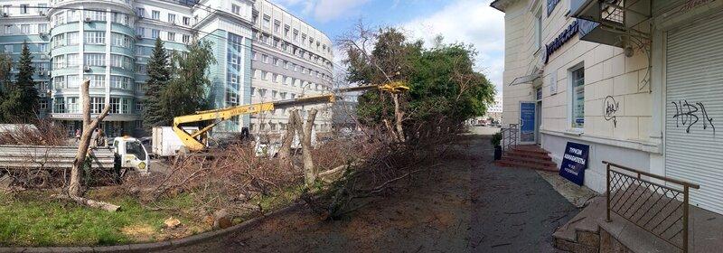 Зачем спилили деревья