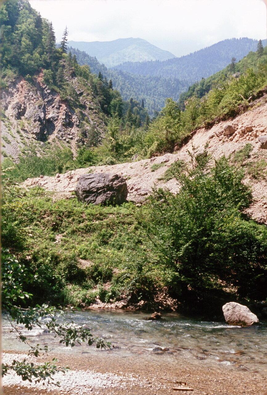 Абхазия. По дороге к озеру Рица. Ущелье Юпшара