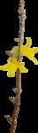 RR_SpringFling_Element (67).png