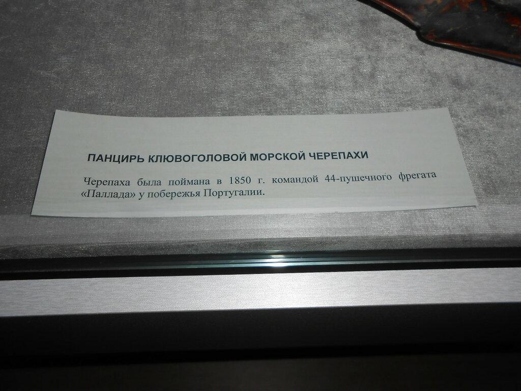 DSCN8397.JPG