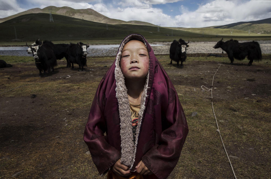 Nomadic Life Threatened on the Tibetan Plateau. August 5, 2015, in Yushu, China. Tibetan nomads face