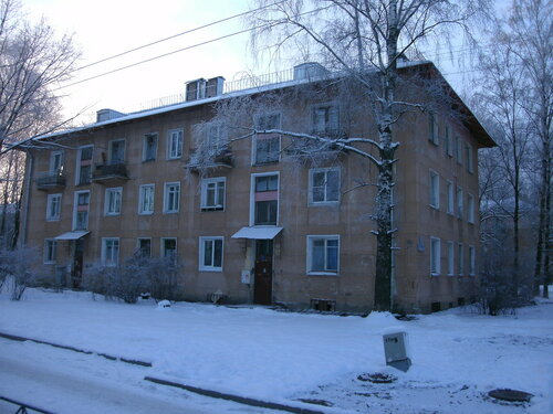Новгородская ул. 10к2