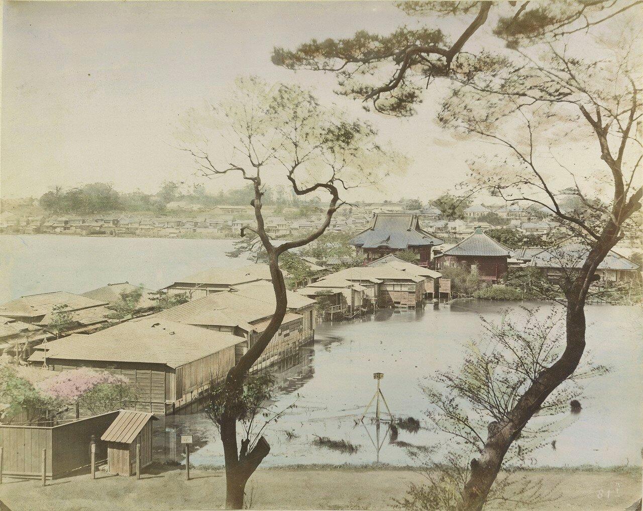 Йокогама